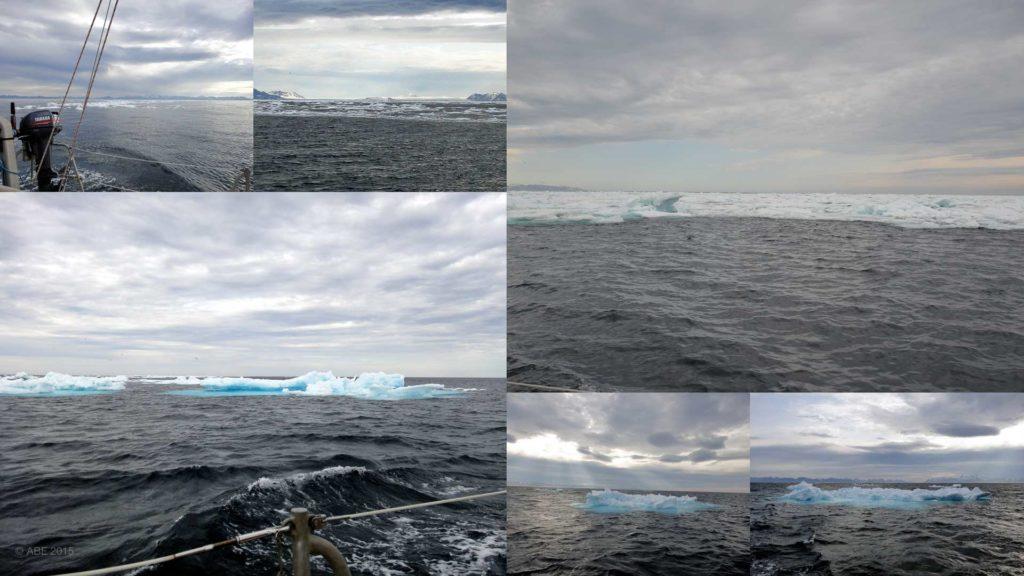 Ice Collage.jpg