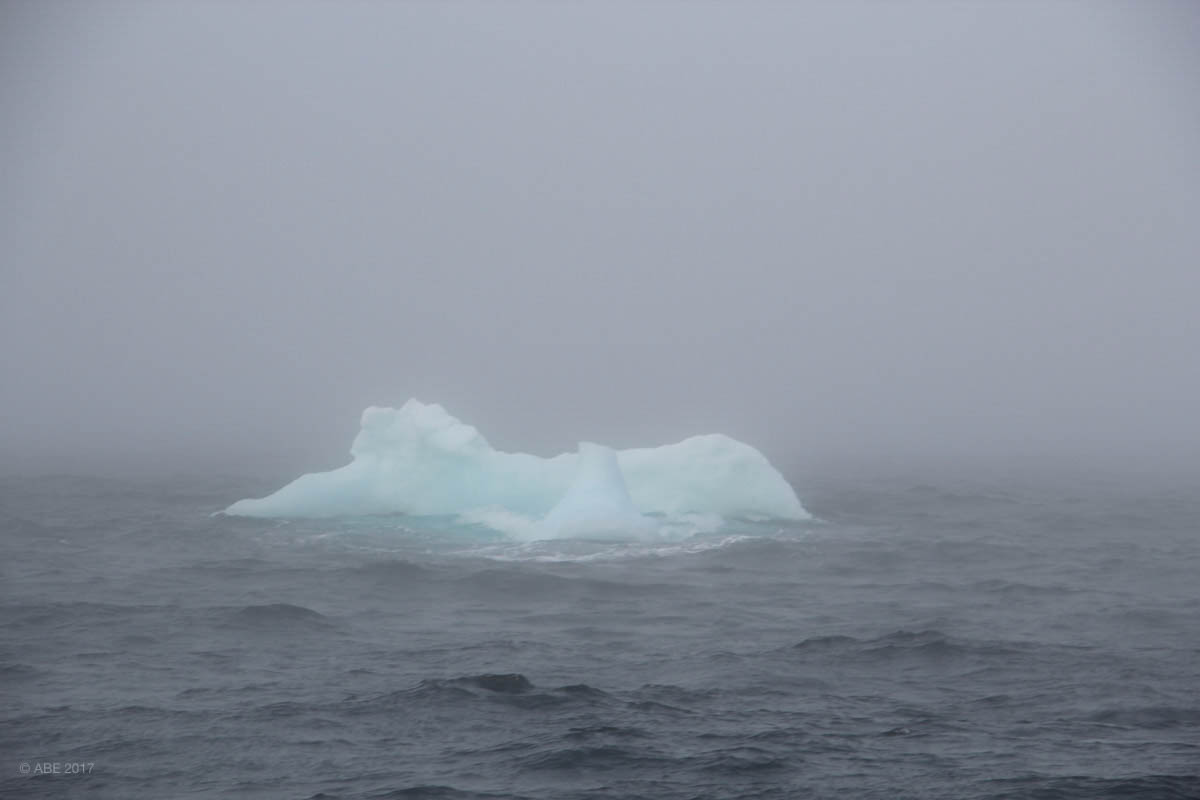Greenland 2017 Websize - 015.jpg