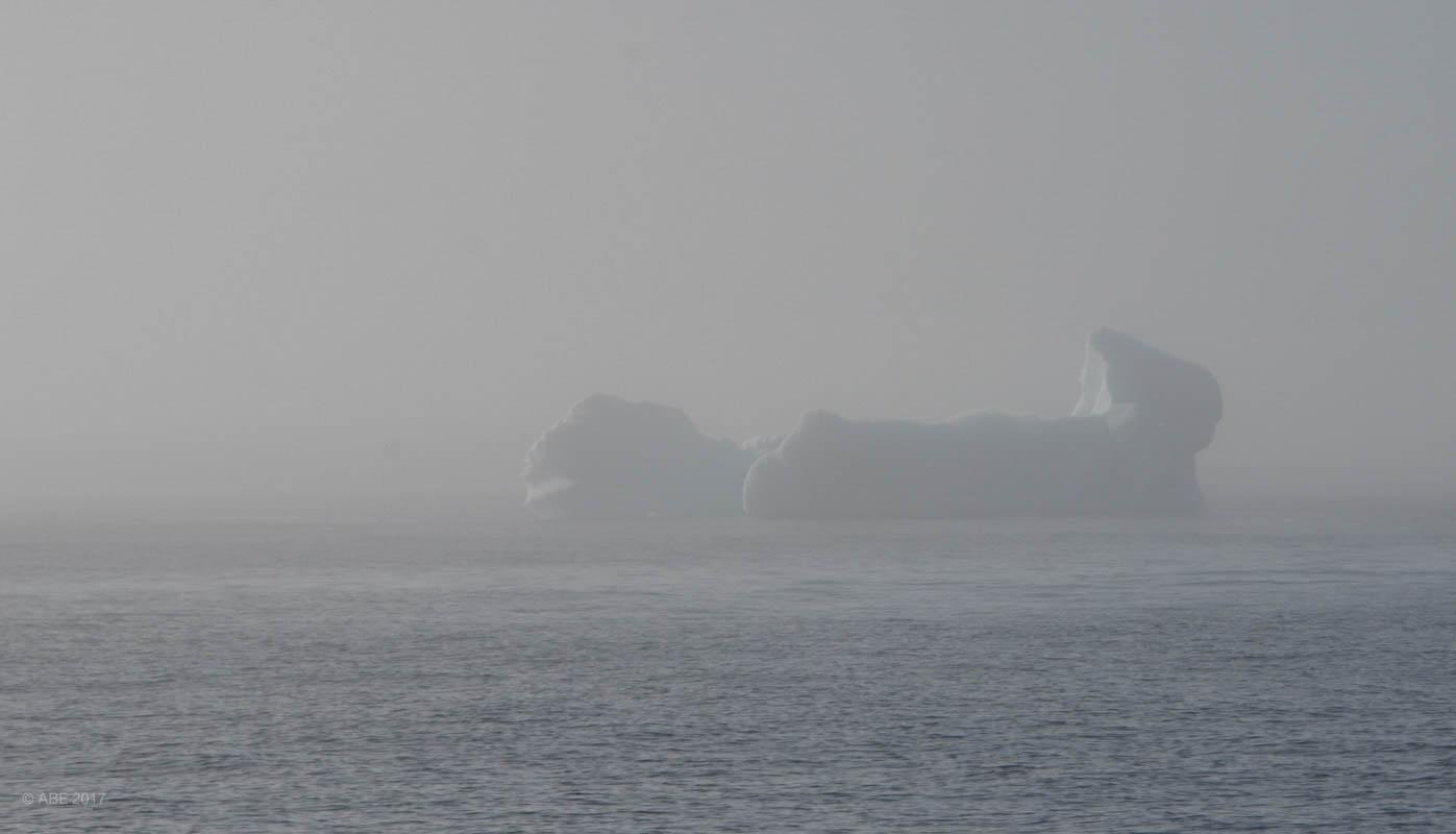 Greenland 2017 Websize - 388.jpg