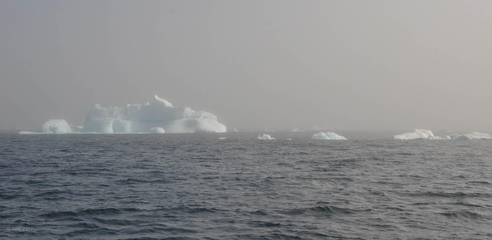 Greenland 2017 Websize - 389.jpg